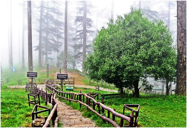Mall Road - 8 Places to Explore while on a Delhi to Mussoorie Trip