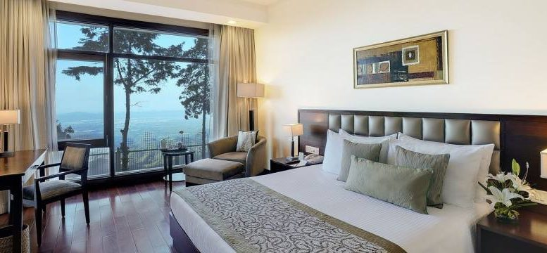 CELEBRATE NEW YEAR'S EVE IN MUSSOORIE WITH JAYPEE RESIDENCY MANOR HOTEL